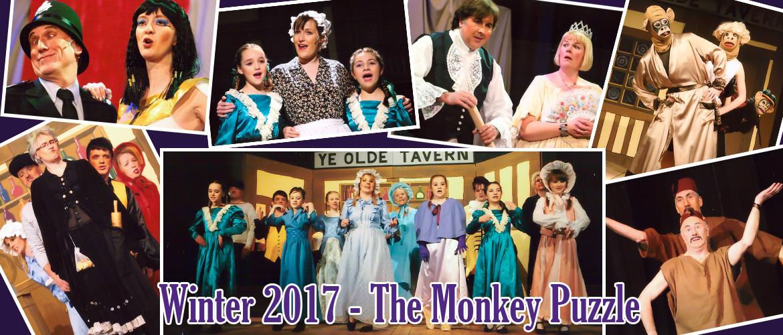The Monkey Puzzle 2017